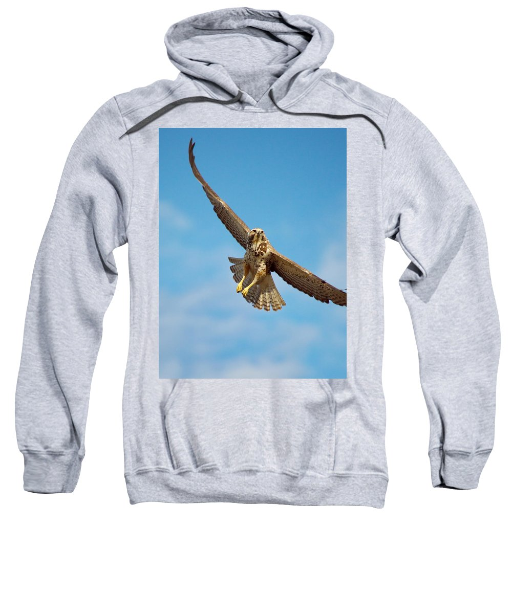 Nature Sweatshirt featuring the photograph Exit Screen Right by Crystal Massop