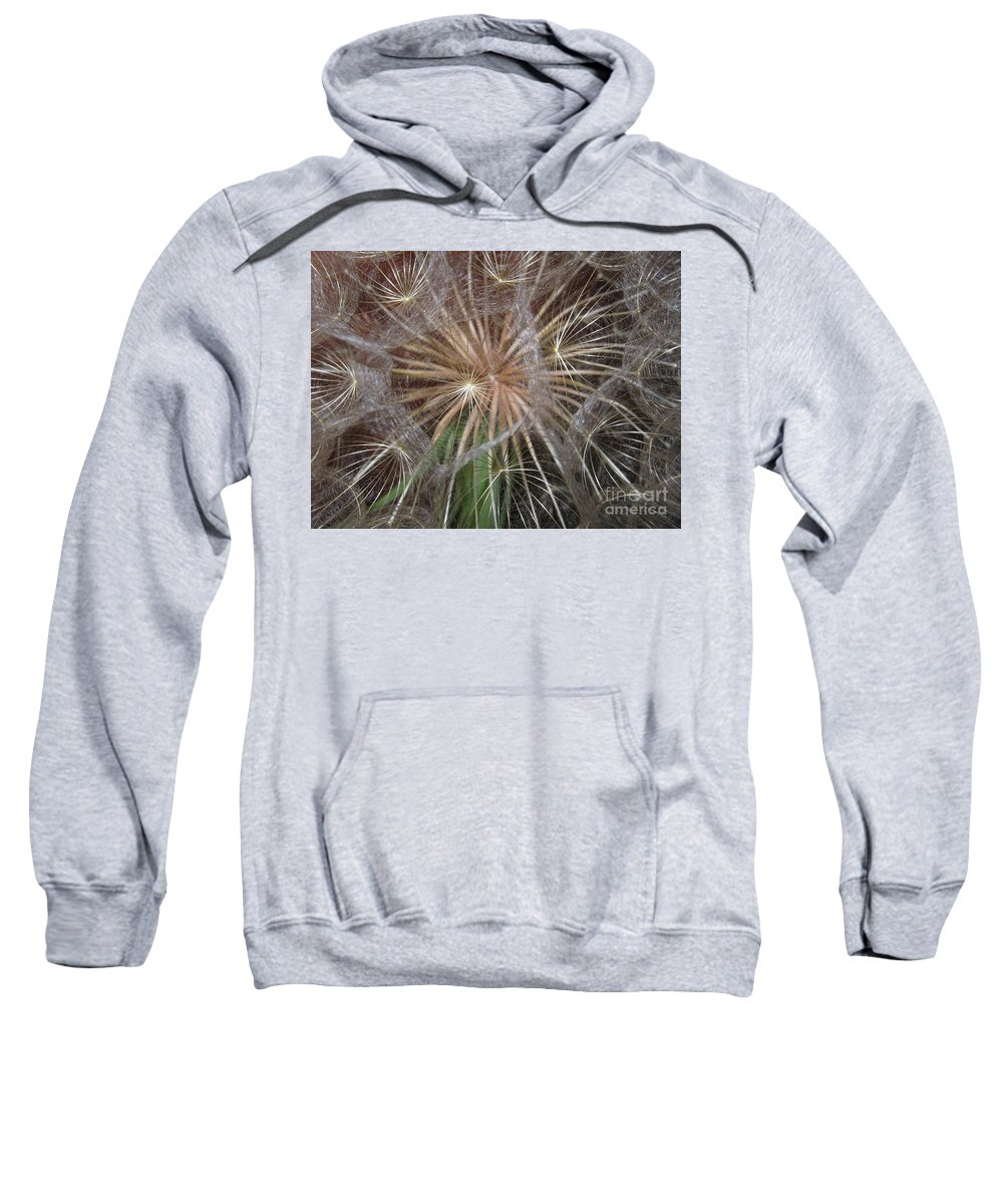 Dandelion Sweatshirt featuring the photograph Experience The Dandelion by Marie Neder