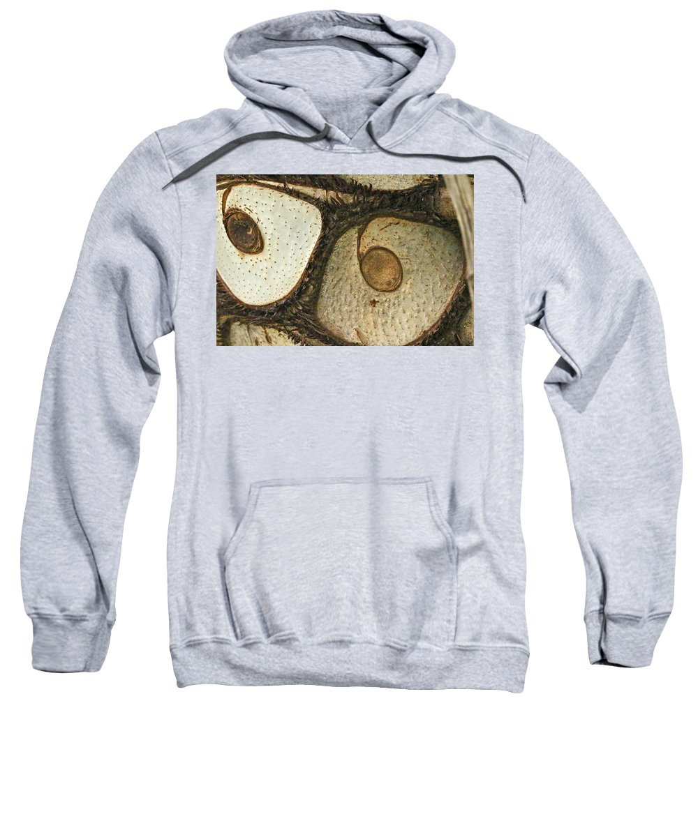 Abstract Sweatshirt featuring the photograph Eye Spy by Mother Nature