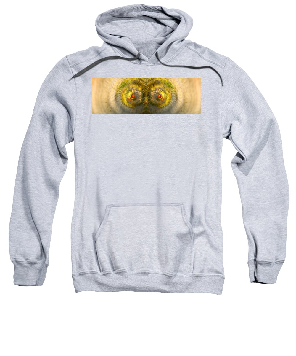 Panorama Sweatshirt featuring the photograph Eyes Of The Garden-1 by Doug Gibbons