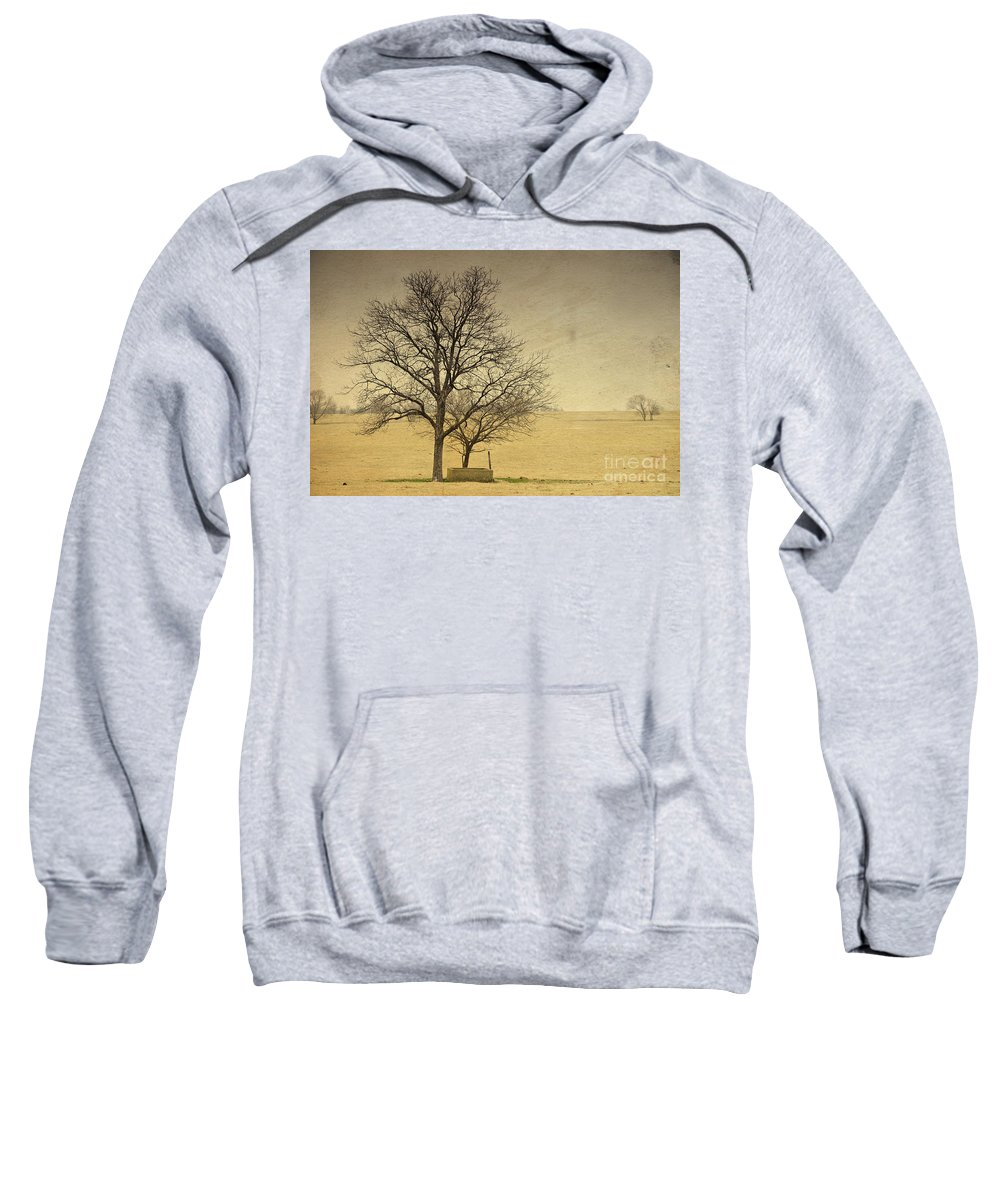 Cement Sweatshirt featuring the photograph F O U N D A T I O N S by Charles Dobbs