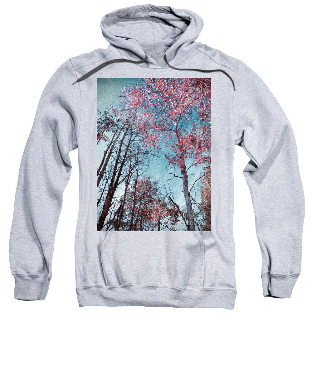 Texture Sweatshirt featuring the photograph Fading Changes by Tara Turner