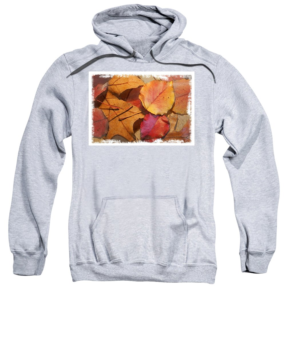 Landscape Sweatshirt featuring the photograph Fall Leaves by Sharon Foster