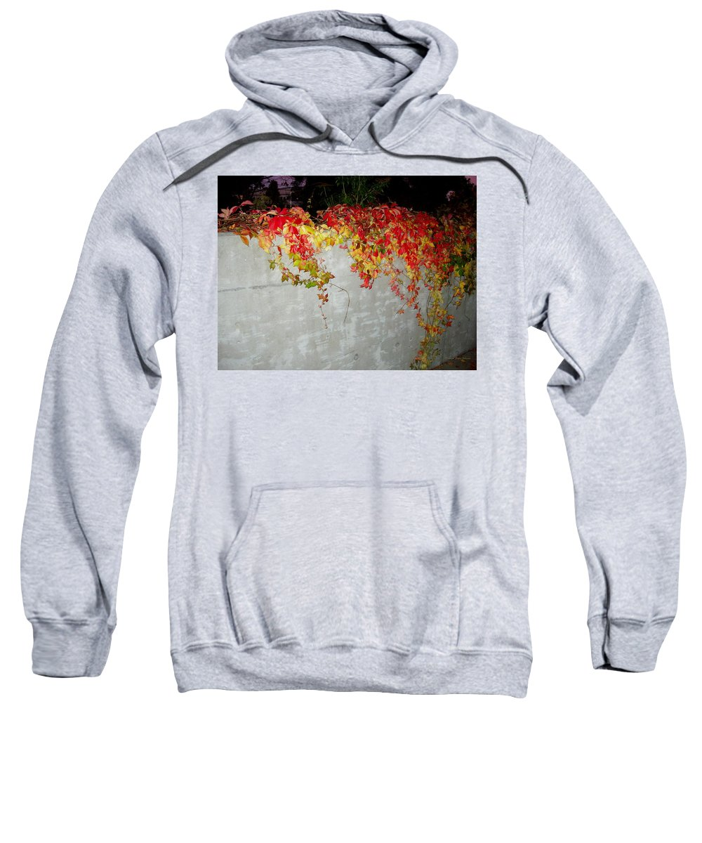 Fall Sweatshirt featuring the photograph Fall On The Wall by Deborah Crew-Johnson