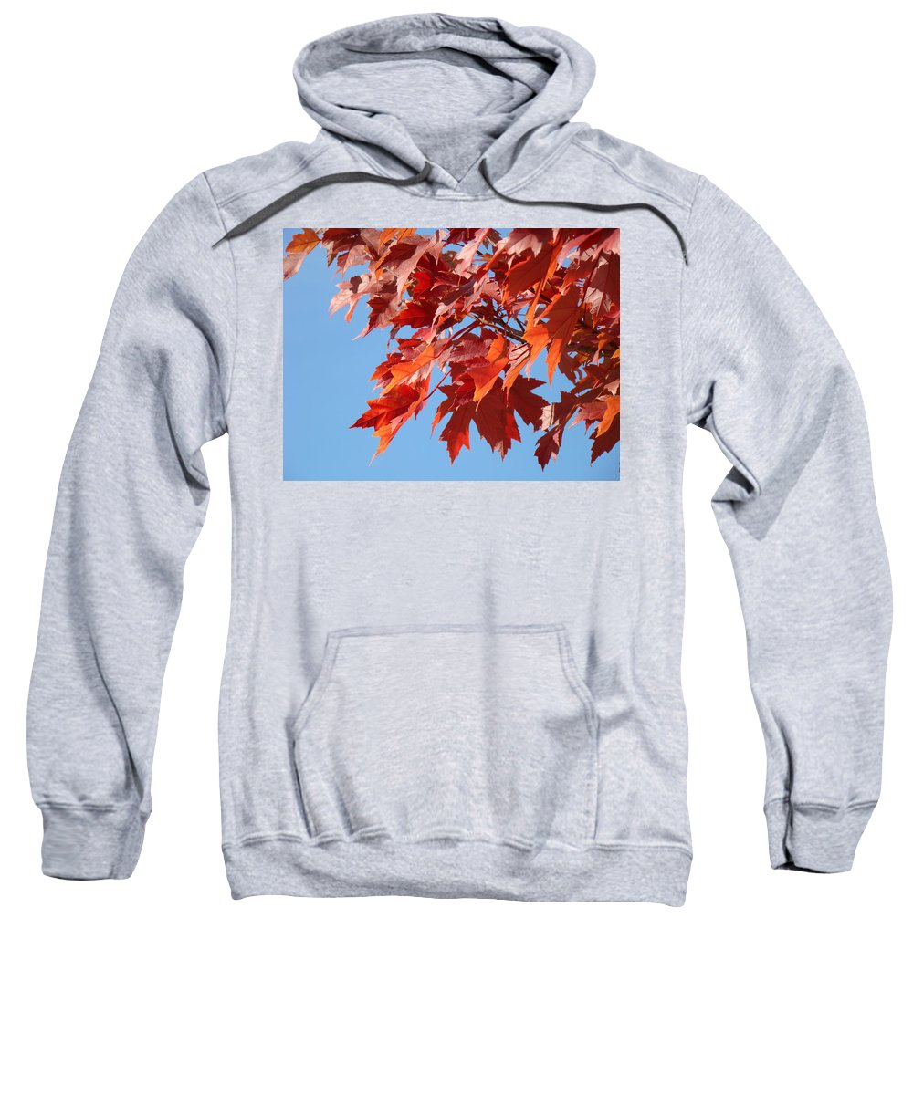Autumn Sweatshirt featuring the photograph Fall Red Orange Leaves Blue Sky Baslee Troutman by Baslee Troutman