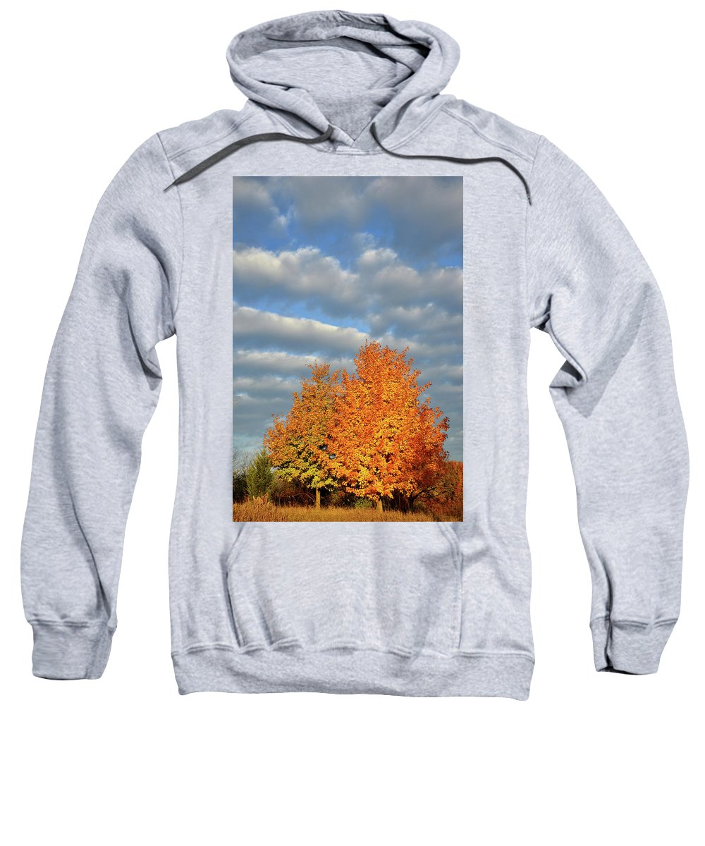 Mchenry County Conservation District Sweatshirt featuring the photograph Fall Sunrise On Sugar Maple Along Route 31 by Ray Mathis