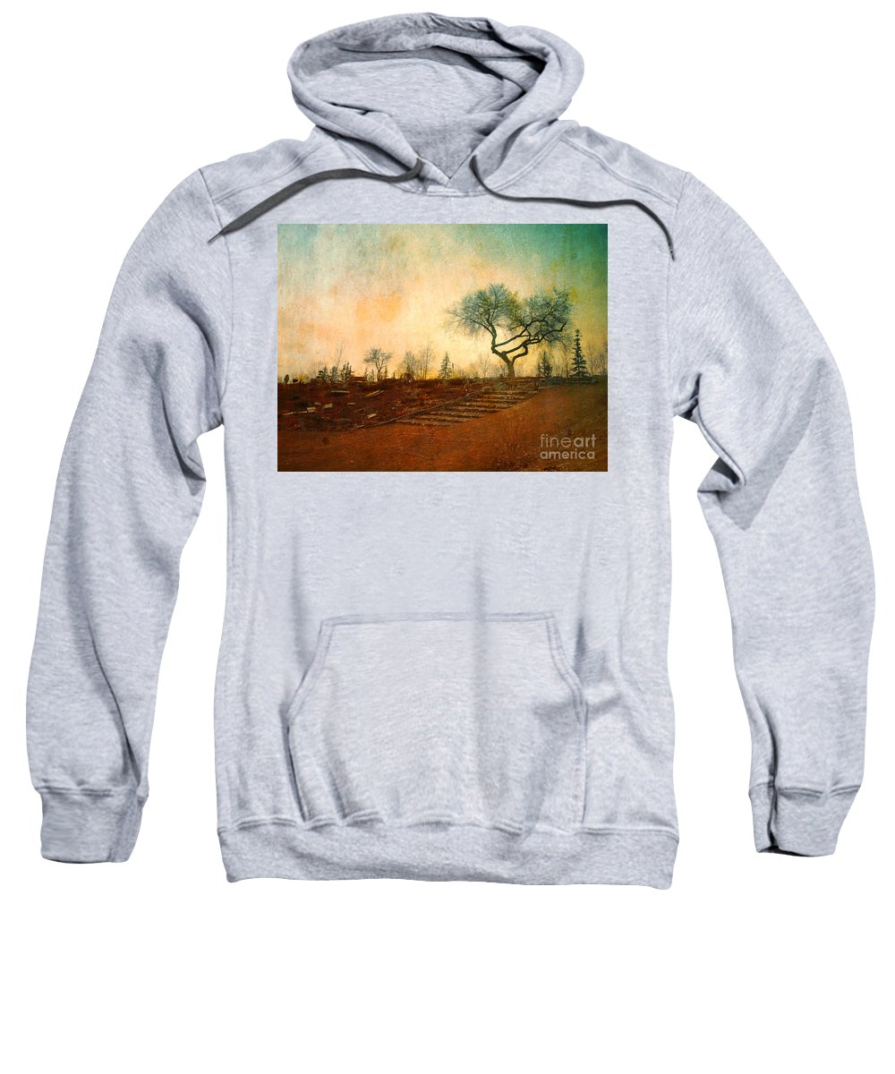 Tree Sweatshirt featuring the photograph Familiar Like Home by Tara Turner
