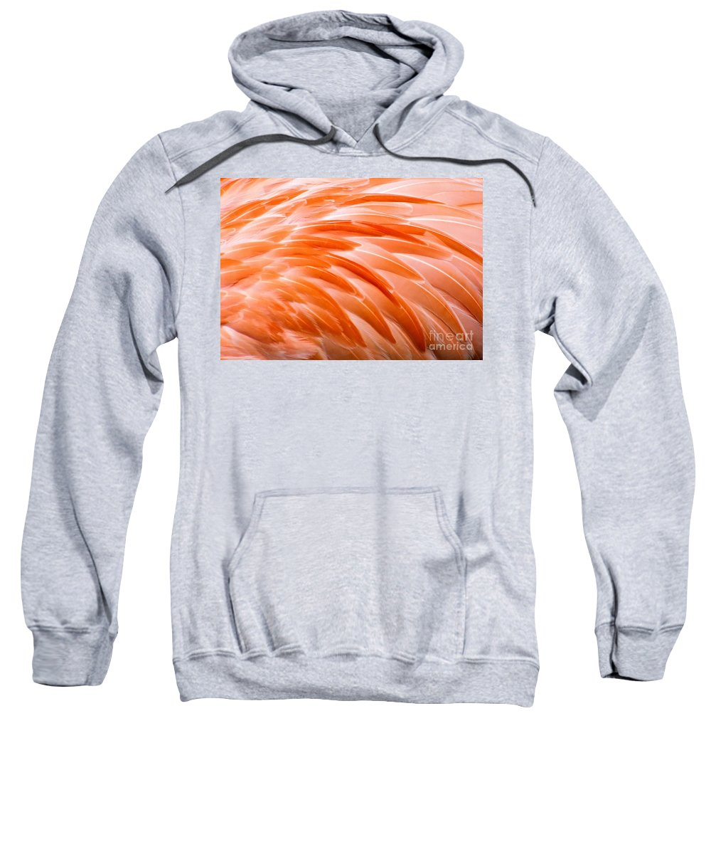 Flamingo Sweatshirt featuring the photograph Fan Of Feathers by Patti Smith