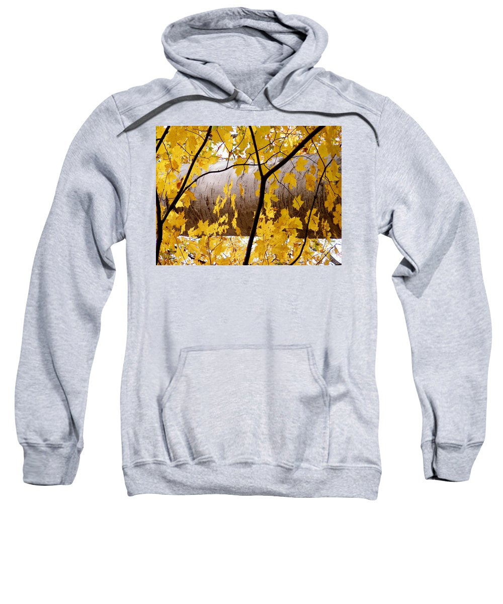 Father Nature Sweatshirt featuring the photograph Father Nature by Ed Smith