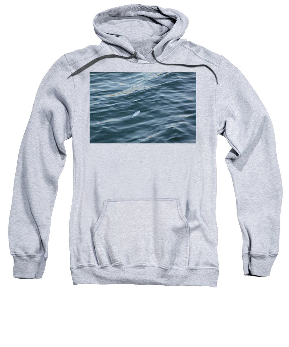 Mom Sweatshirt featuring the photograph Feather From Heaven by Lana Tegeler