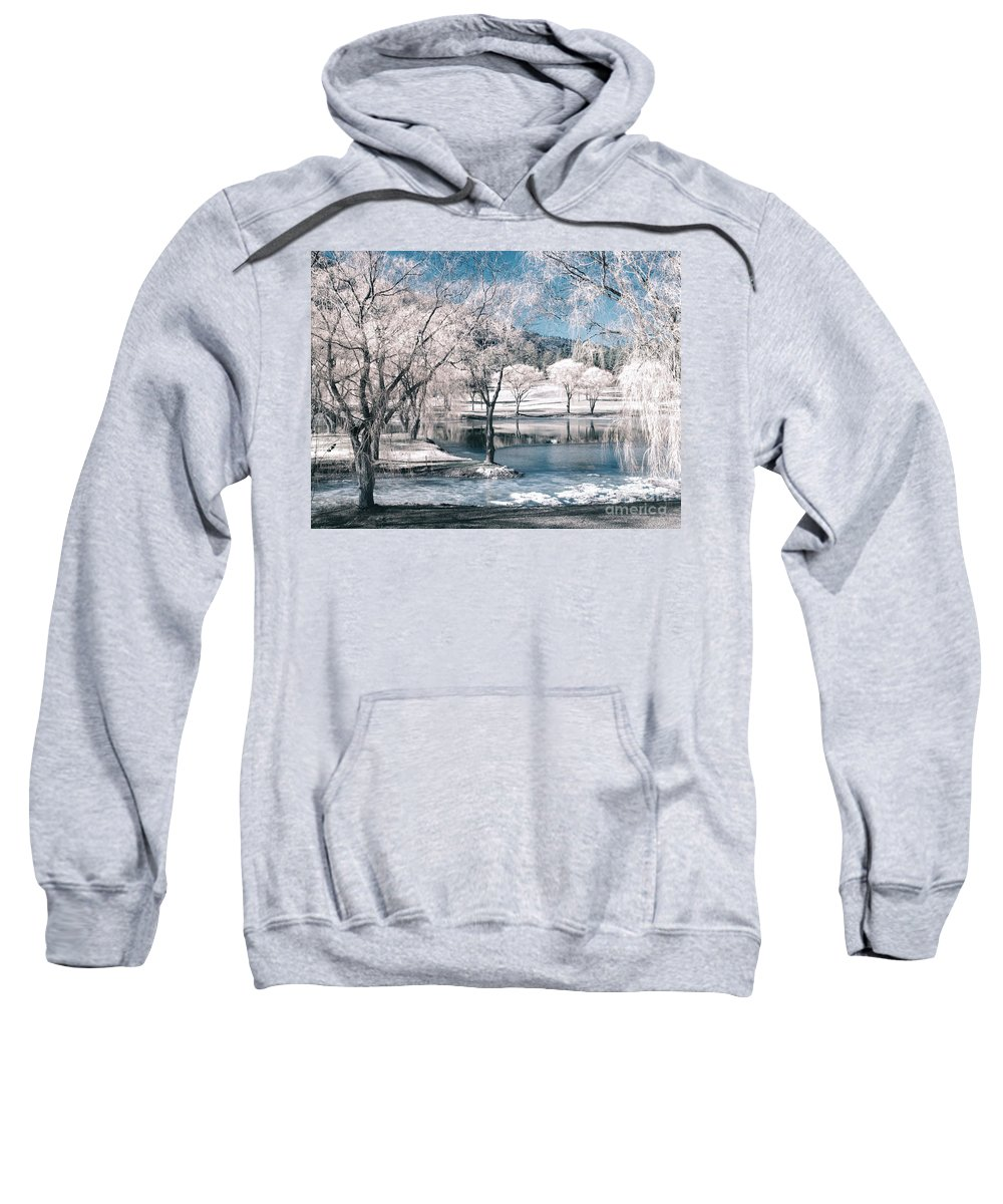 Trees Sweatshirt featuring the photograph February 22 2010 by Tara Turner
