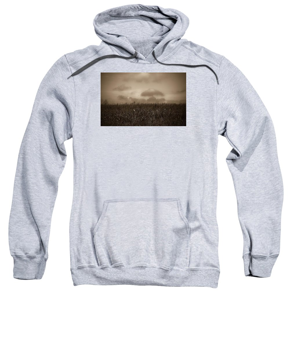 Poland Sweatshirt featuring the photograph Field In Sepia Northern Poland by Michael Ziegler