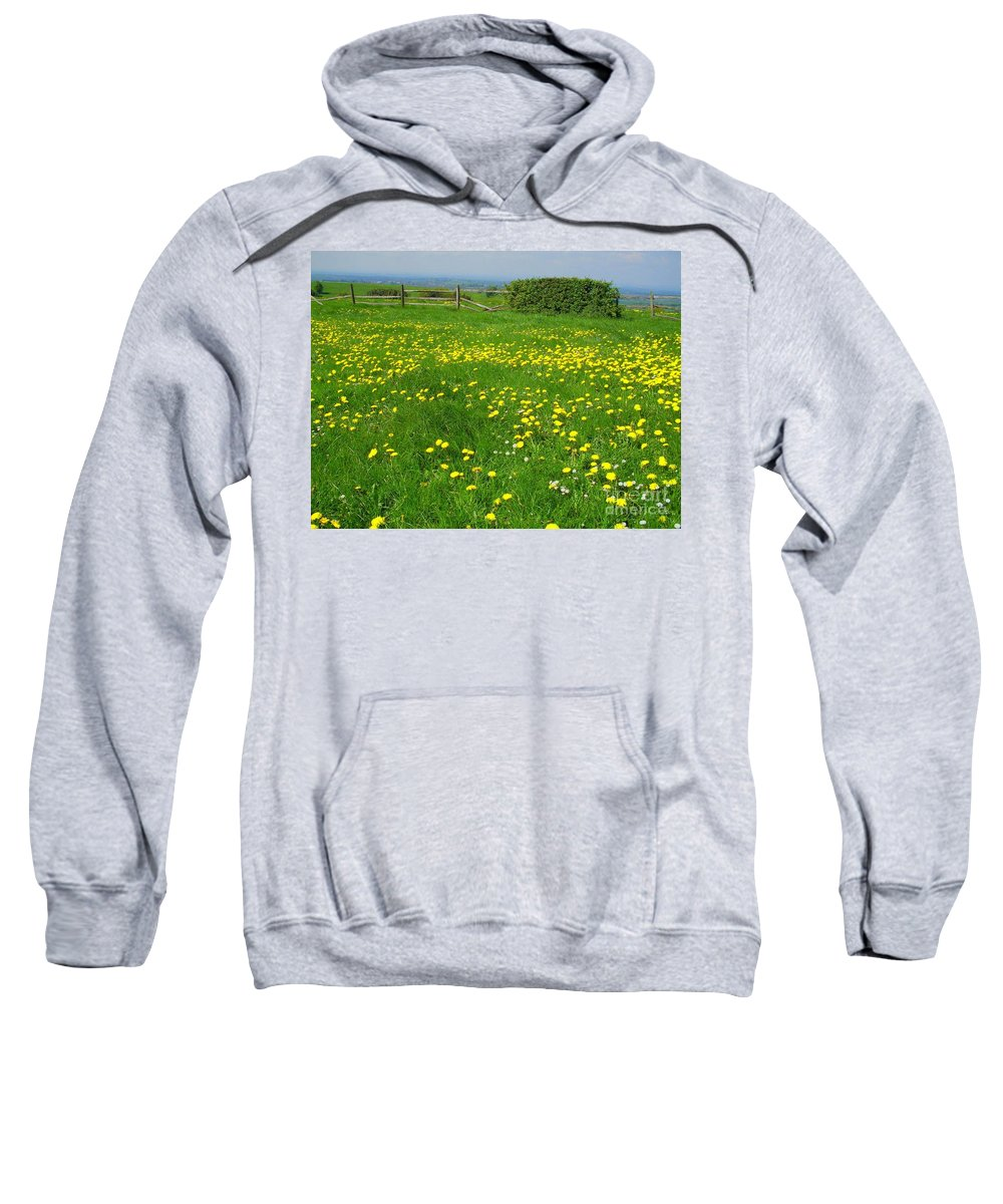 Spring Sweatshirt featuring the photograph Field With Yellow Flowers by Elena Ivanova
