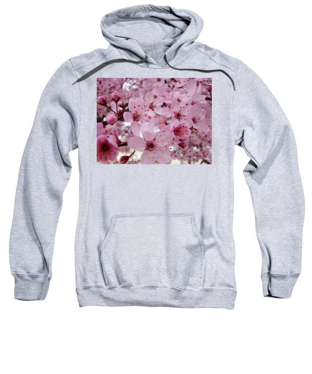 Blossom Sweatshirt featuring the photograph Fine Art Prints Spring Pink Blossoms Trees Canvas Baslee Troutman by Baslee Troutman