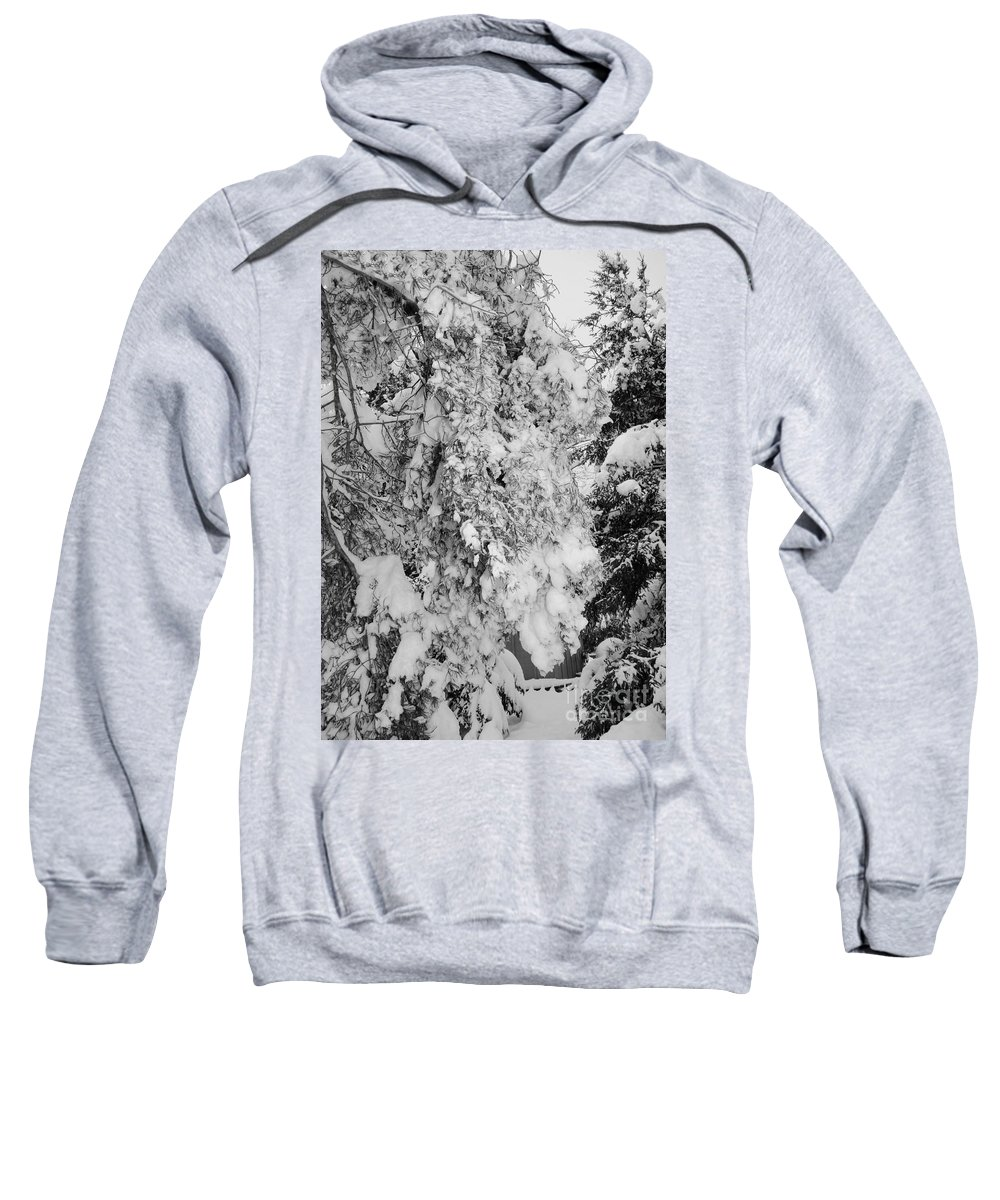 Snow Sweatshirt featuring the photograph First Snowfall by Kathleen Struckle
