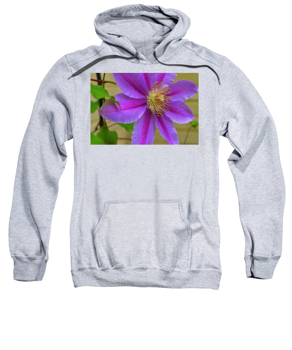Flower Sweatshirt featuring the photograph Flamboyant by Marla McPherson