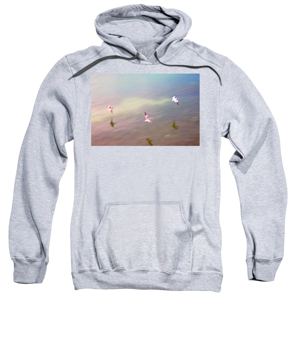 Pelicans Sweatshirt featuring the photograph Flight Impressions by Mal Bray