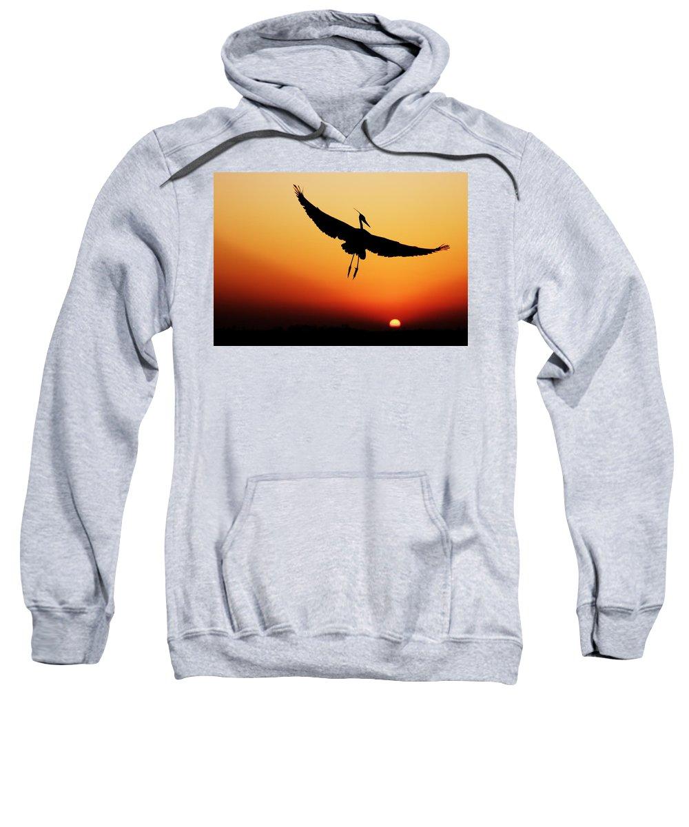Silhouette Sweatshirt featuring the photograph Flight by Janet Fikar