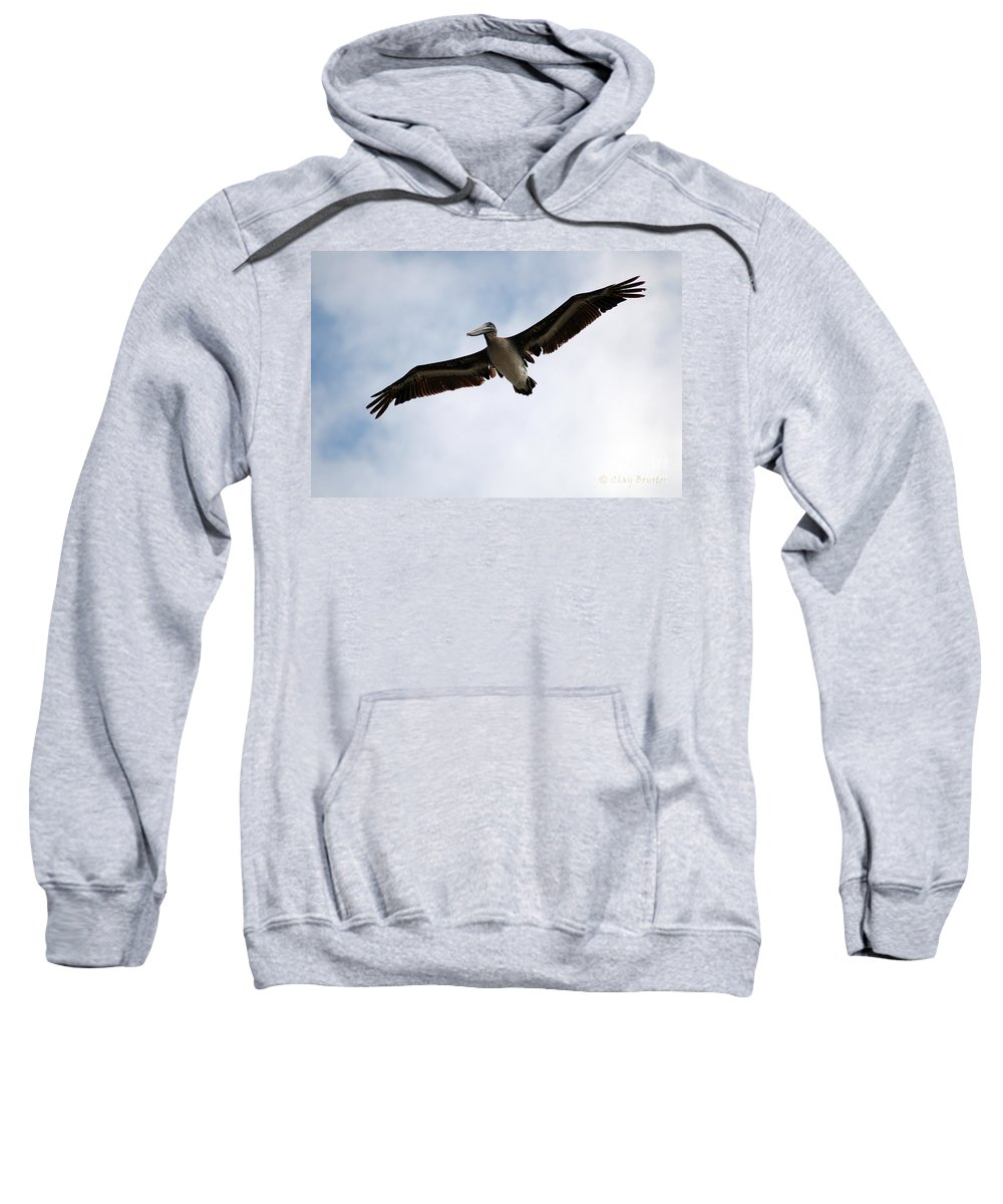 Clay Sweatshirt featuring the photograph Flight Of The Pelican by Clayton Bruster
