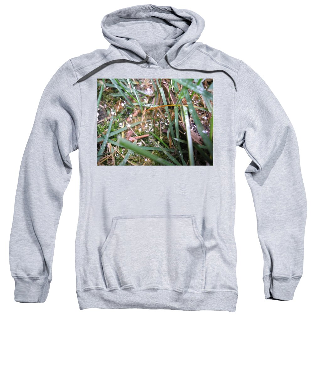 Grass Sweatshirt featuring the photograph Floating Crystals by Kelly Potochick-Burtt