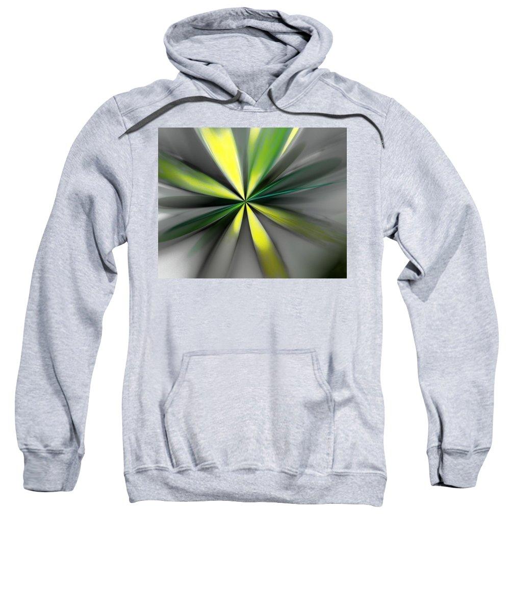 Digital Painting Sweatshirt featuring the digital art Floral 2-19-19 by David Lane