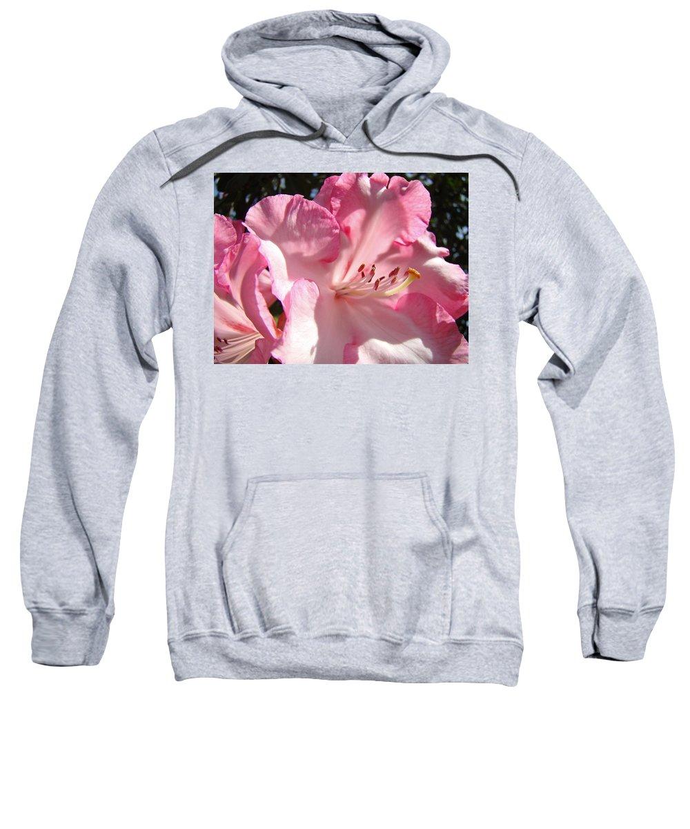 Rhodies Sweatshirt featuring the photograph Floral Fine Art Prints Pink Rhodie Flower Baslee Troutman by Baslee Troutman