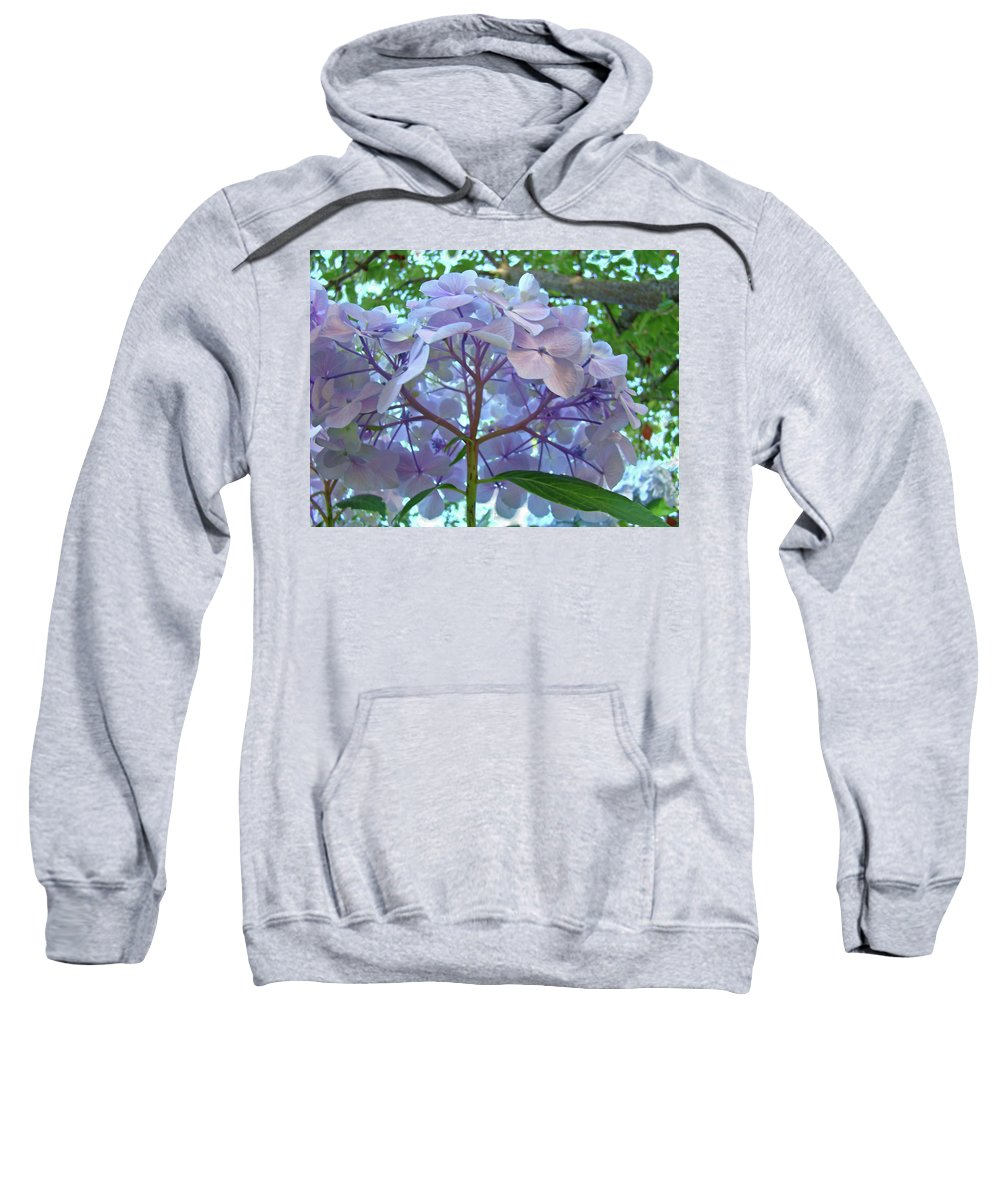 Nature Sweatshirt featuring the photograph Floral Landscape Blue Hydrangea Flowers Baslee Troutman by Baslee Troutman
