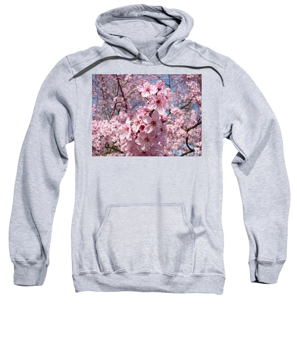 Blossom Sweatshirt featuring the photograph Floral Spring Art Pink Blossoms Canvas Baslee Troutman by Baslee Troutman