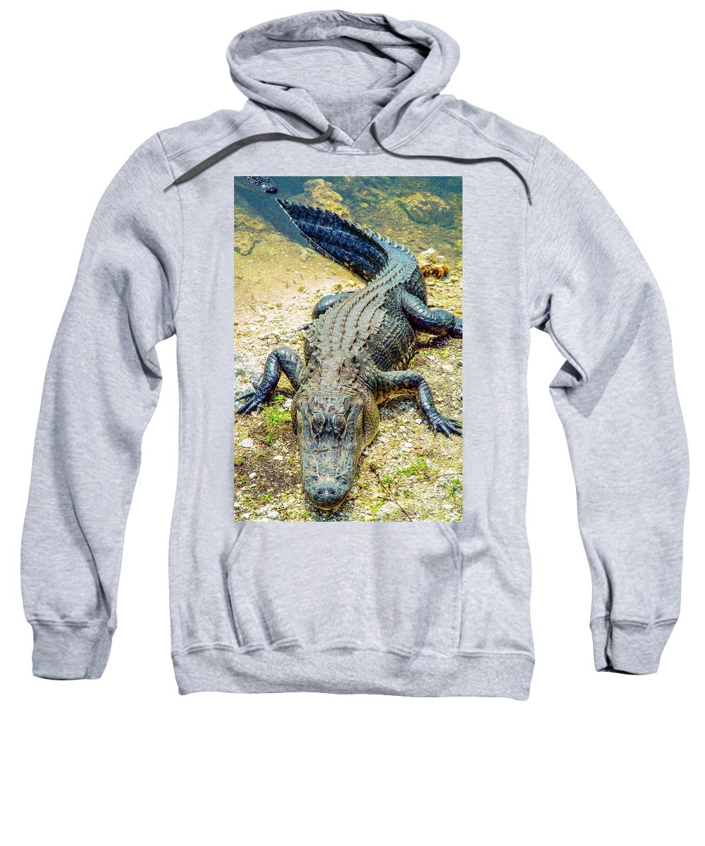 Florida Sweatshirt featuring the photograph Florida Gator 2 by Tommy Anderson