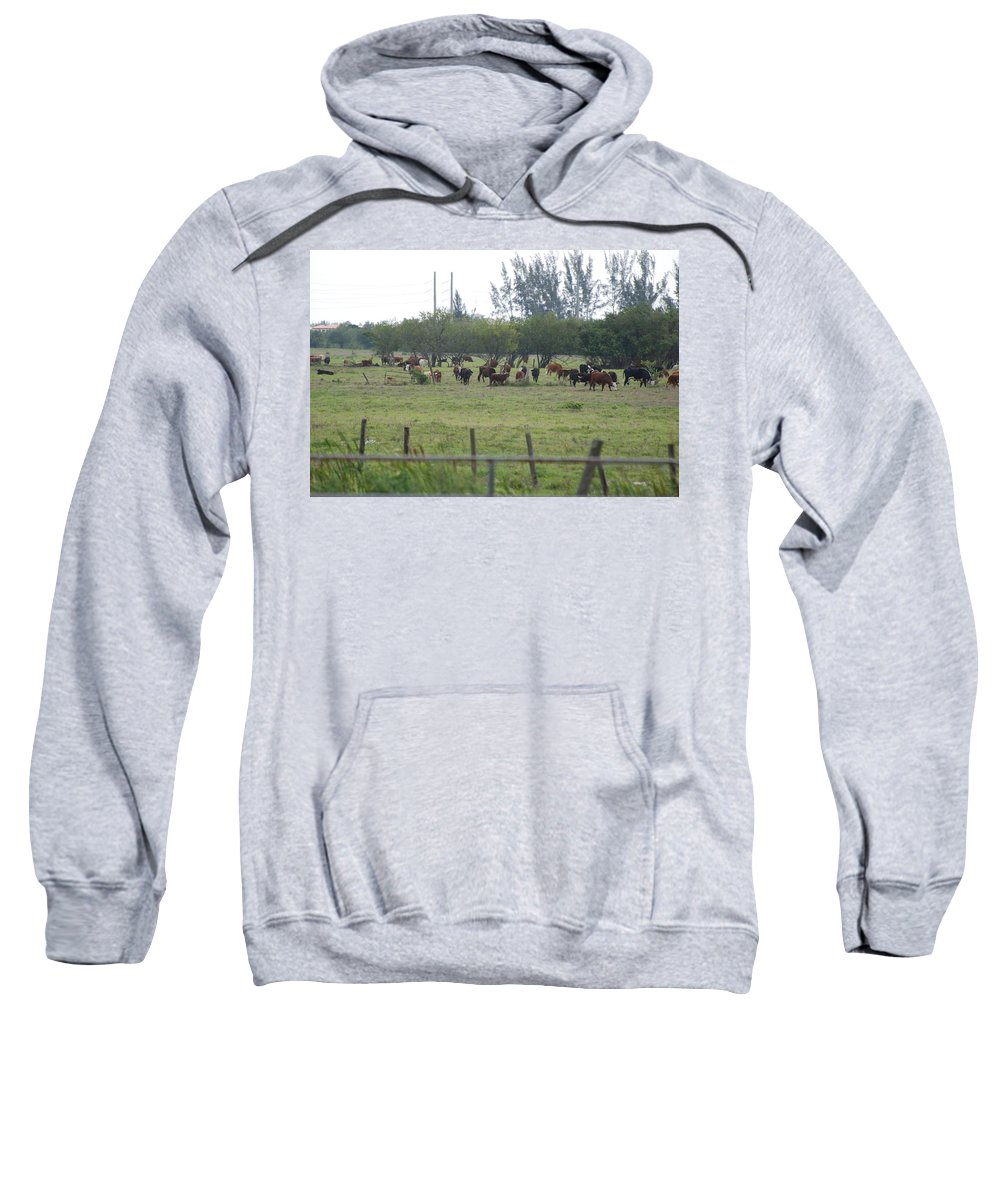 Trees Sweatshirt featuring the photograph Florida Ranch by Rob Hans