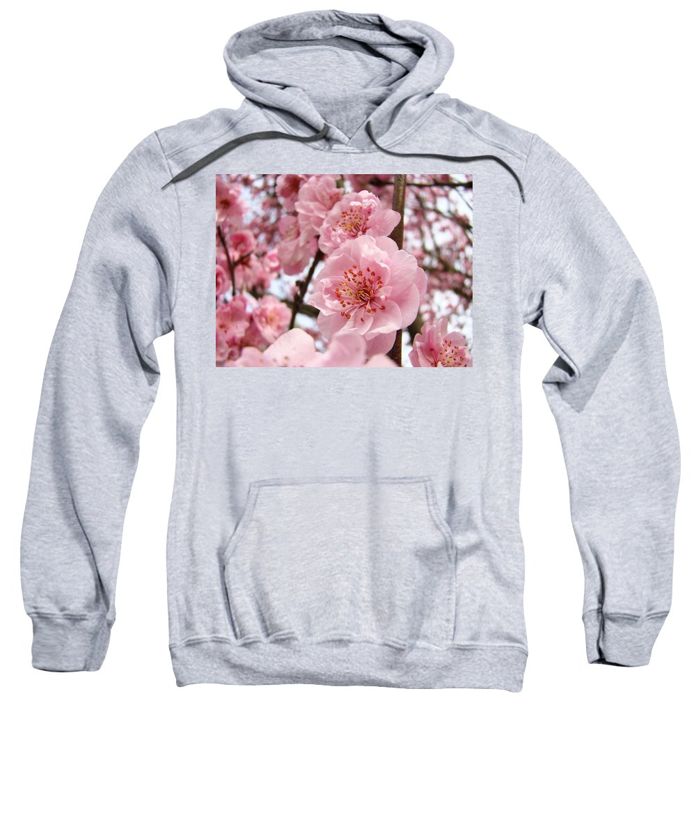 Blossom Sweatshirt featuring the photograph Flower Blossoms Art Spring Trees Pink Blossom Baslee Troutman by Baslee Troutman
