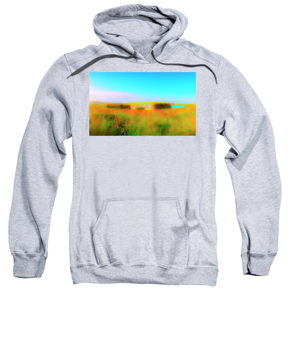 Railroad Sweatshirt featuring the photograph Flower Boxes by Jan W Faul