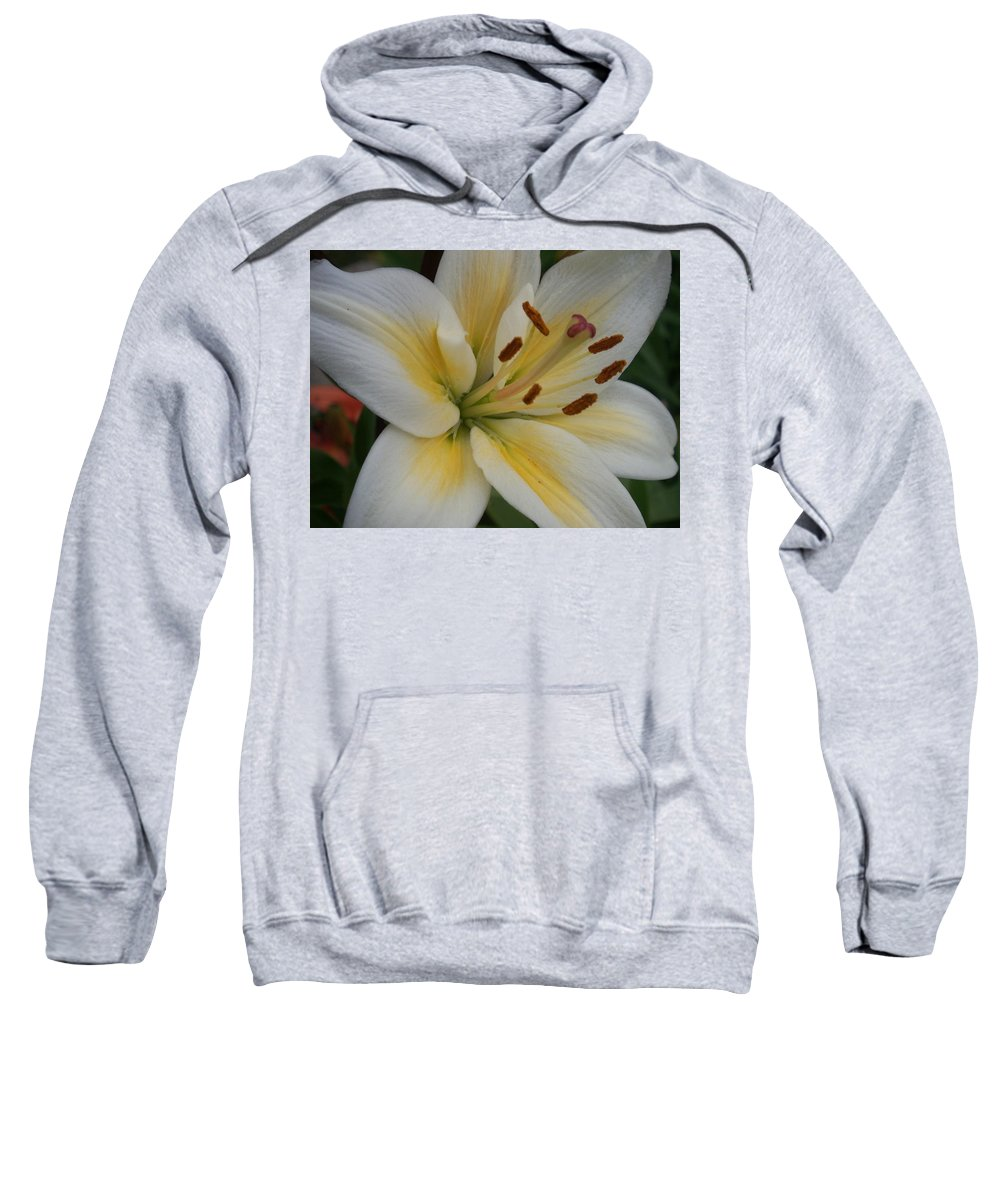 Flower Sweatshirt featuring the photograph Flower Close Up 1 by Anita Burgermeister