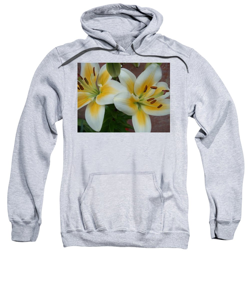 Flower Sweatshirt featuring the photograph Flower Close Up 5 by Anita Burgermeister