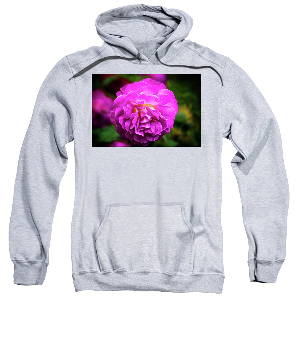 Art Sweatshirt featuring the photograph Flower In A Garden by Maria Coulson