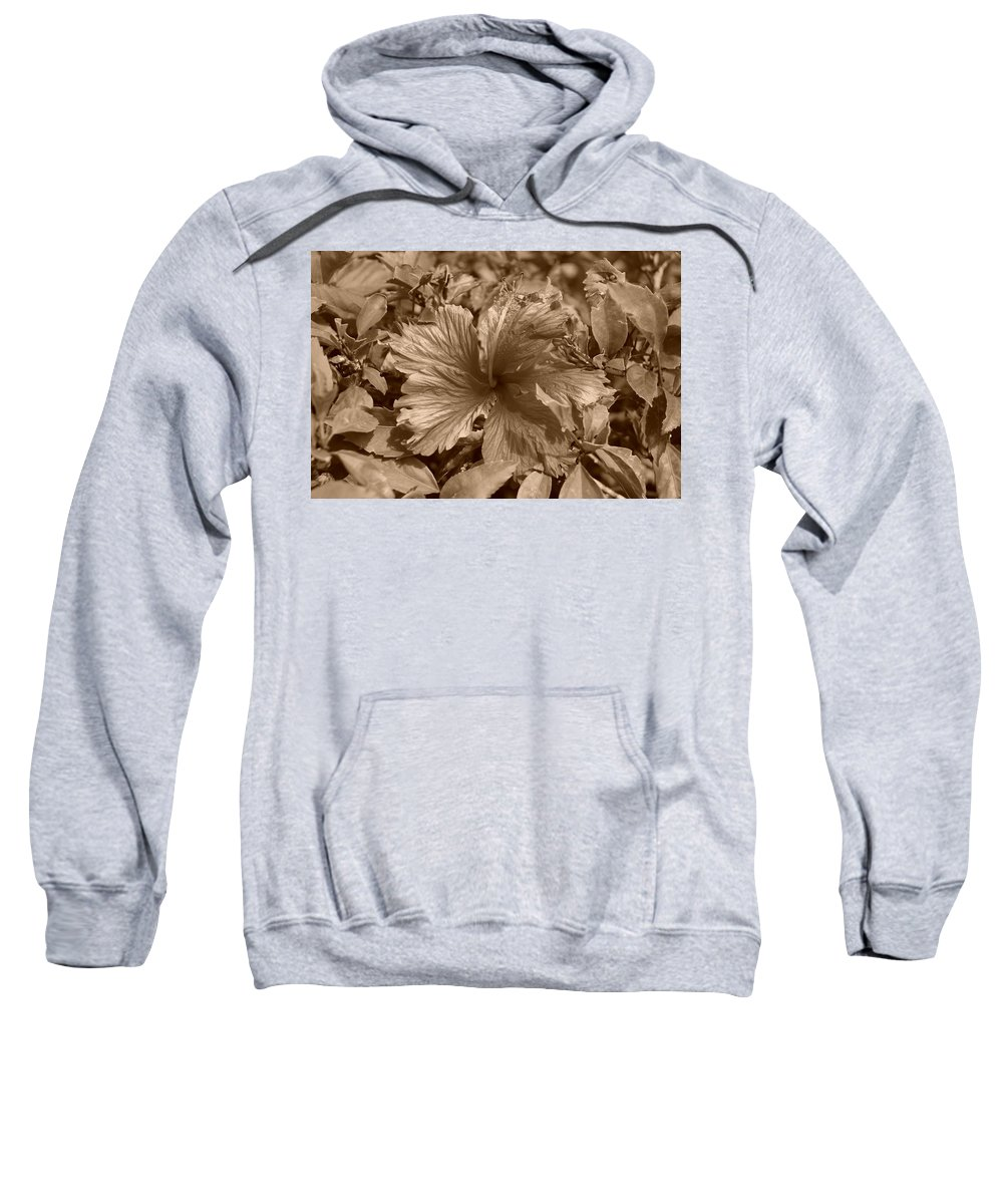 Sepia Sweatshirt featuring the photograph Flower In Sepia by Rob Hans