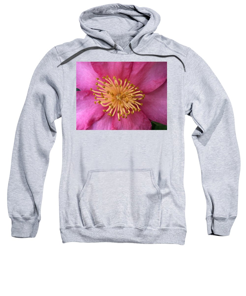 Flowers Sweatshirt featuring the photograph Flower Macro by Amy Fose
