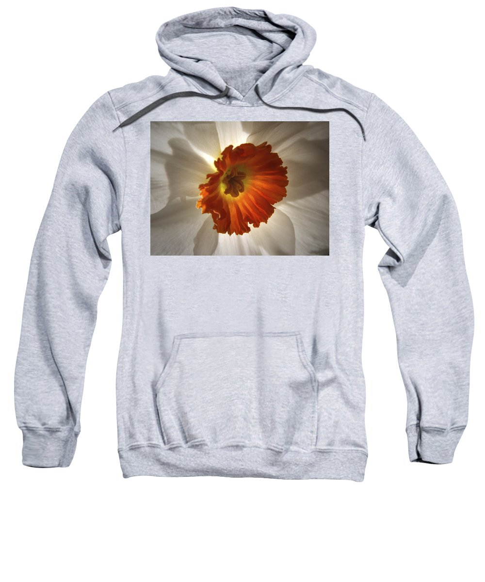 Flowers Sweatshirt featuring the photograph Flower Narcissus by Nancy Griswold