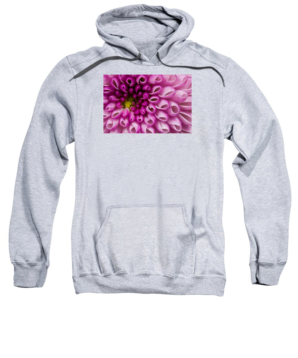 Flower Purple Sweatshirt featuring the photograph Flower No. 4 by Andrew Giovinazzo