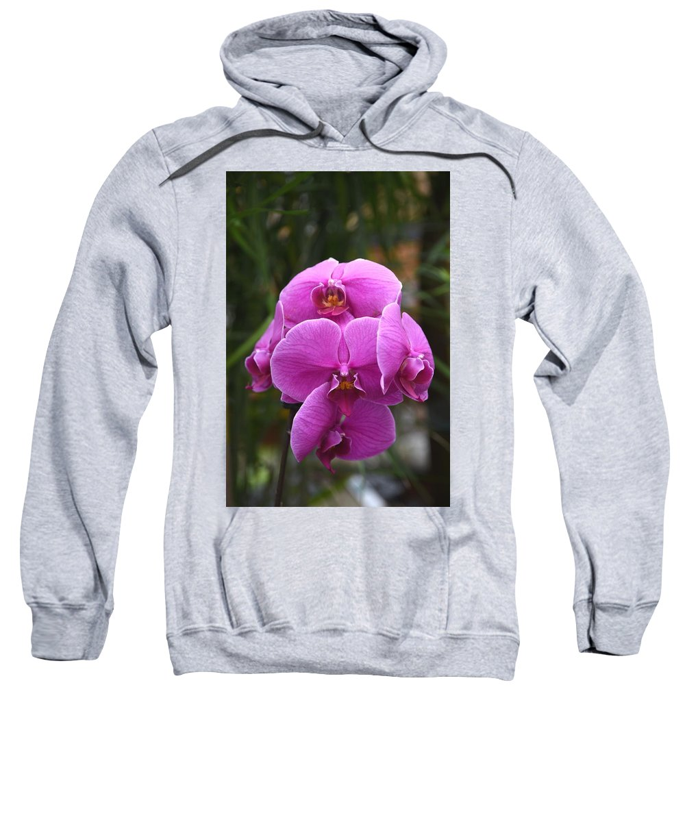 Orchids Photos Sweatshirt featuring the photograph Flowers 822 by Joyce StJames