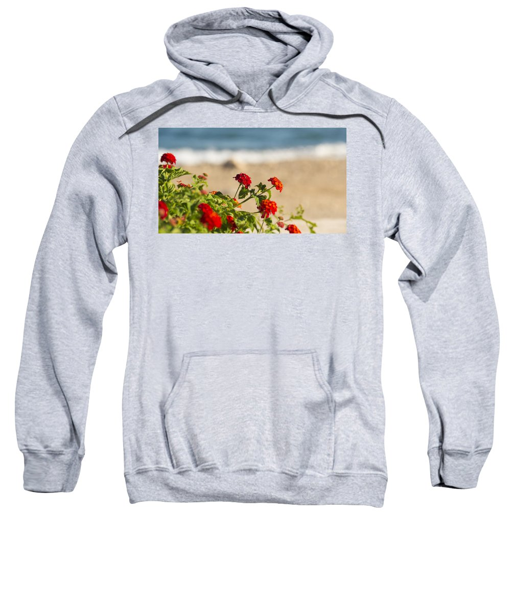 Flowers Of Rhodes By Tamara Sushko Flowers Sweatshirt featuring the photograph Flowers Of Rhodes by Tamara Sushko