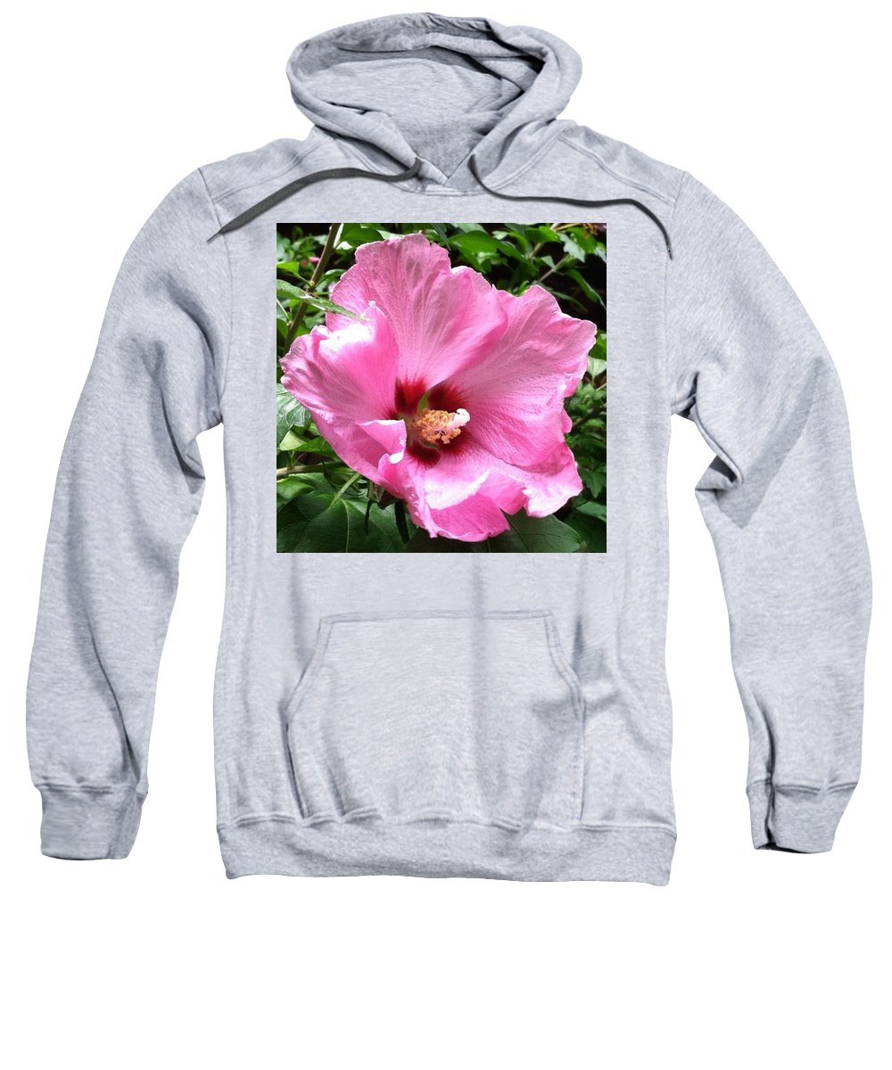 Pink Sweatshirt featuring the photograph #flowers #pink #floral by Jennifer Beaudet