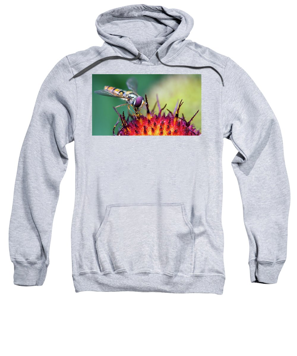 Fly Sweatshirt featuring the digital art Fly by Bert Mailer