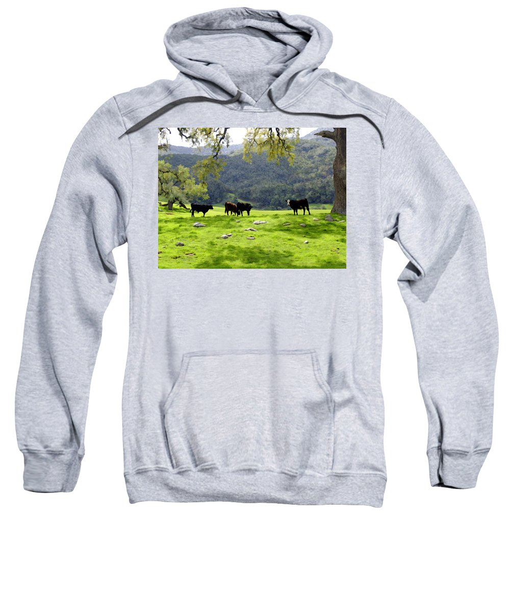 Landscapes Sweatshirt featuring the photograph Four Cows At Nojoqui Ranch by Kurt Van Wagner