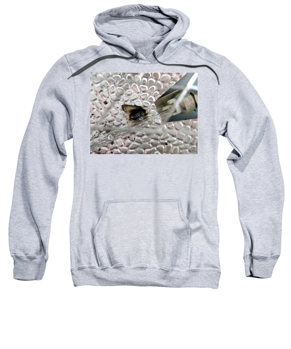 Sweatshirt featuring the photograph Fried Fly by Amy Hosp