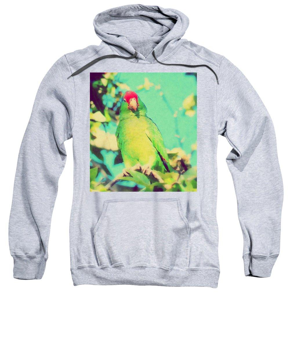 Parrot Sweatshirt featuring the photograph From A High Place by Karen Jbon Lee