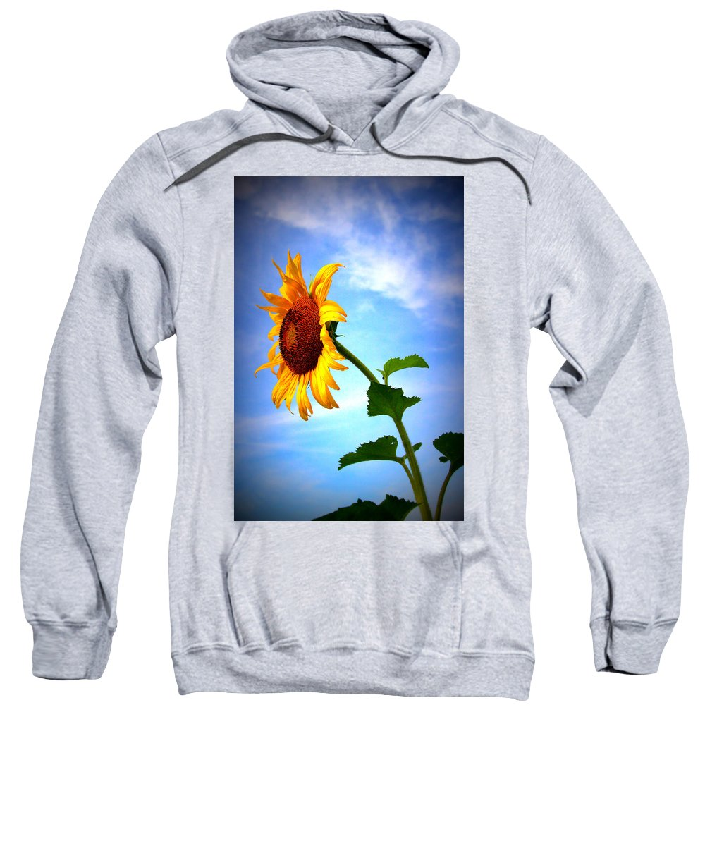 Sun Sweatshirt featuring the photograph From The Side by Carolyn Stagger Cokley