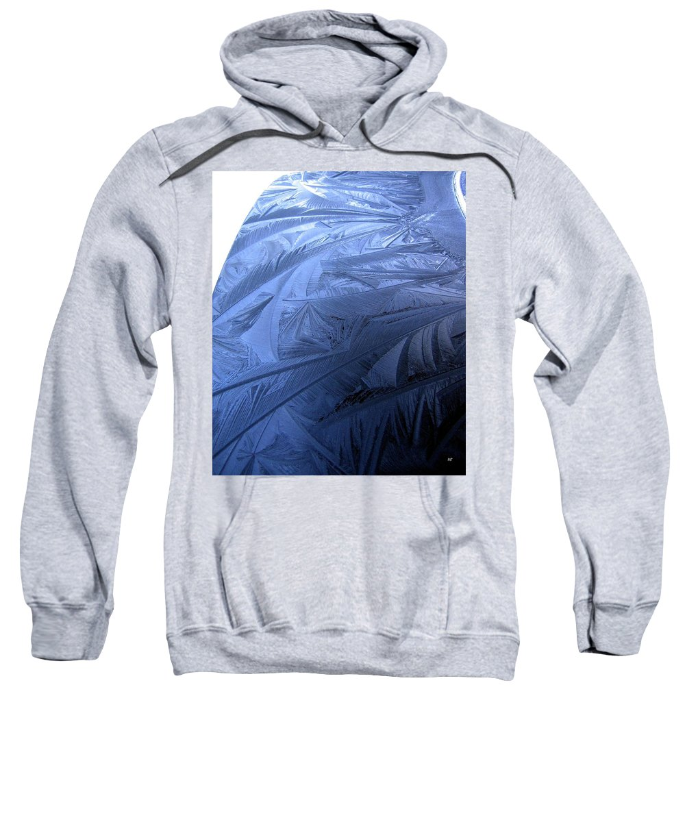 Frost Design Sweatshirt featuring the photograph Frosty Palm Tree Fronds On Car Trunk by Will Borden