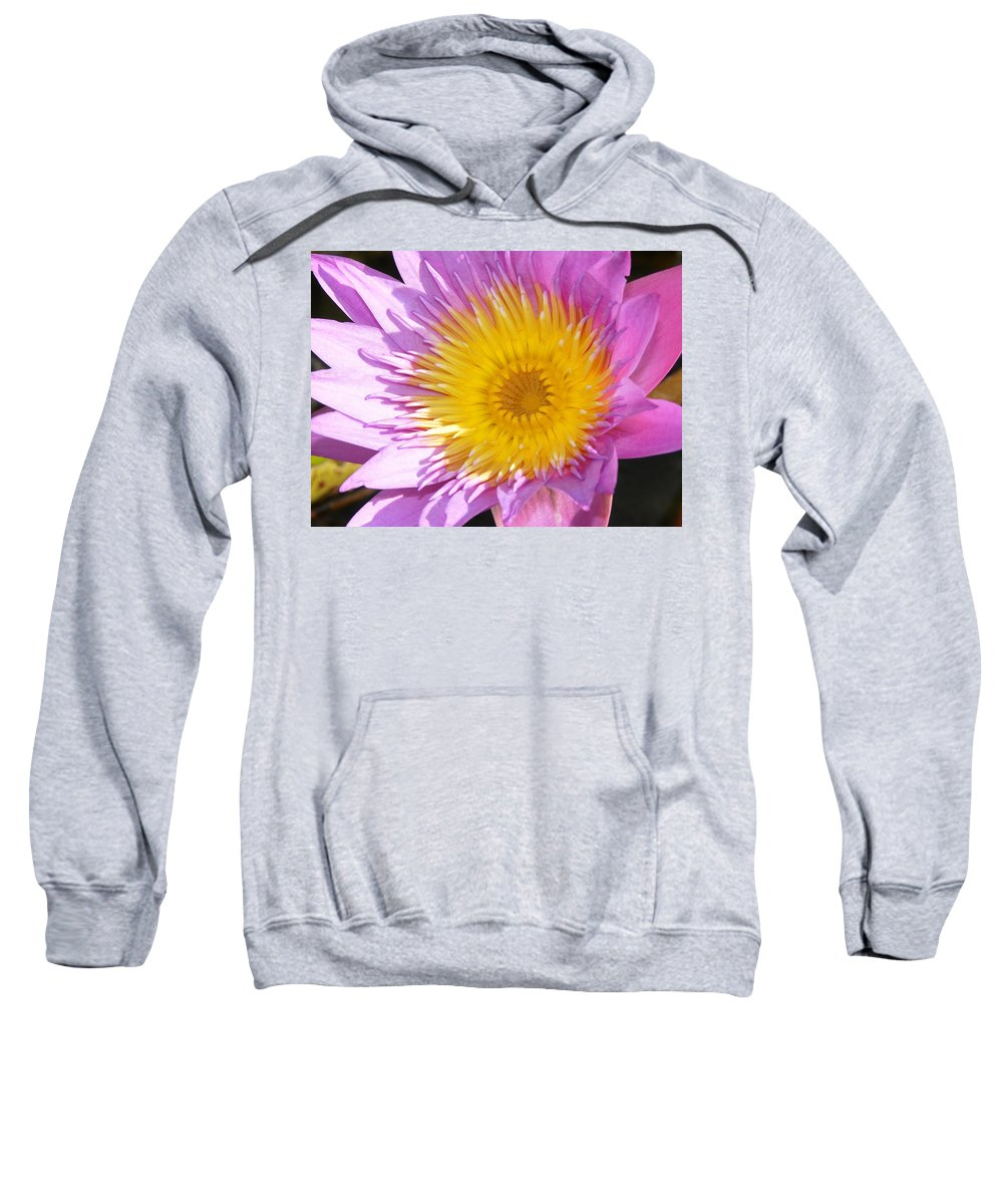 Flower Sweatshirt featuring the photograph Full Bloom by David Lee Thompson