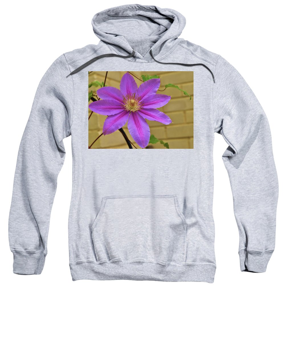 Flower Sweatshirt featuring the photograph Full On Lovely by Marla McPherson
